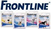 Frontline spot on dog x-large (>40)